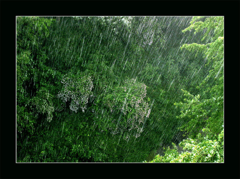 it's raining cats and dogs.... ;-)