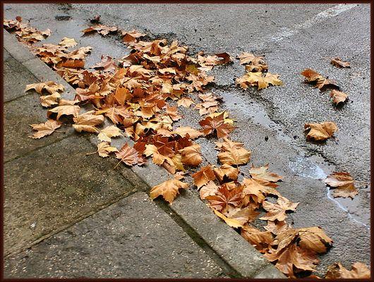 It`s raining in winter.