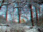 Itzehoer Winterwald