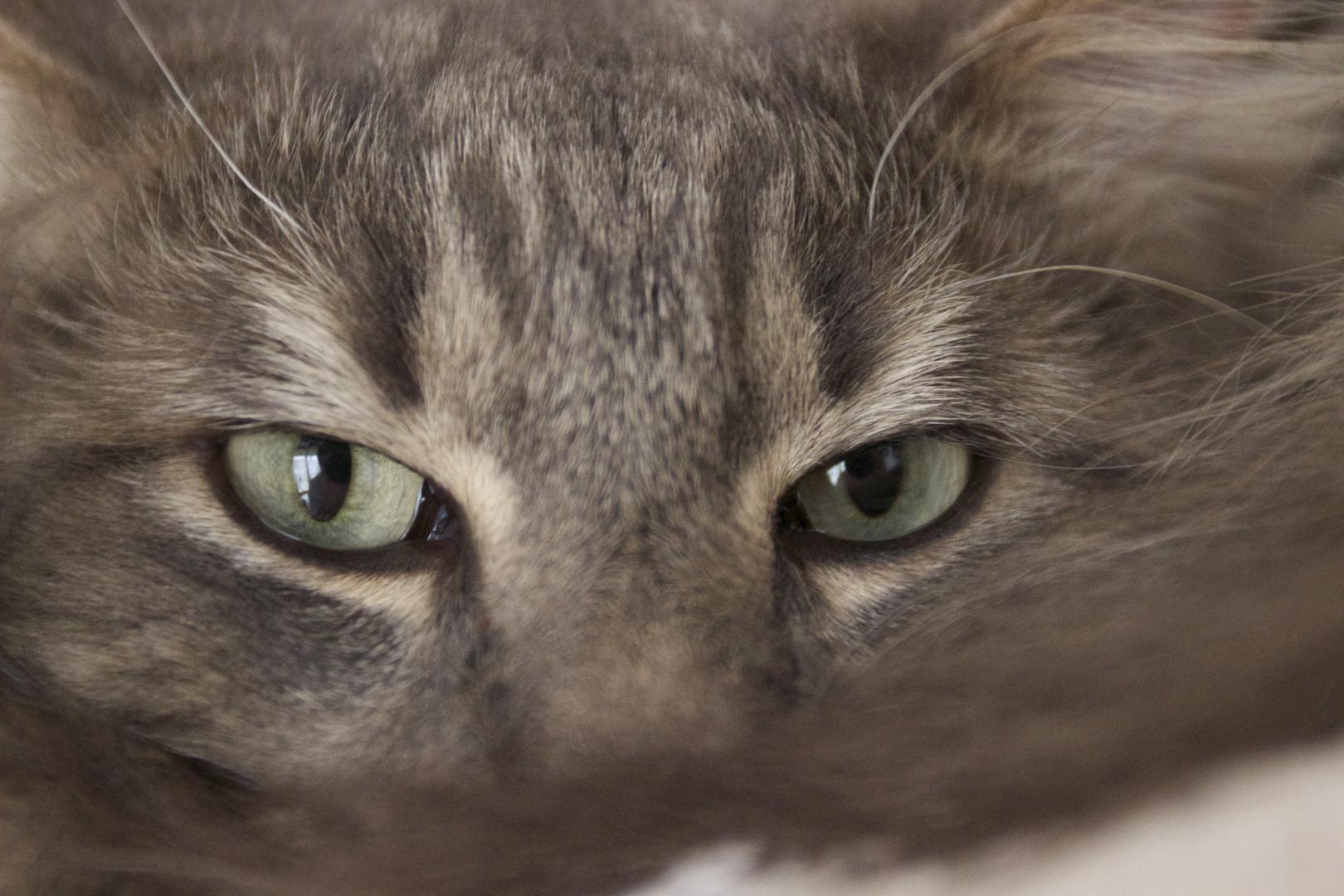 I´ve got an eye on YOU!