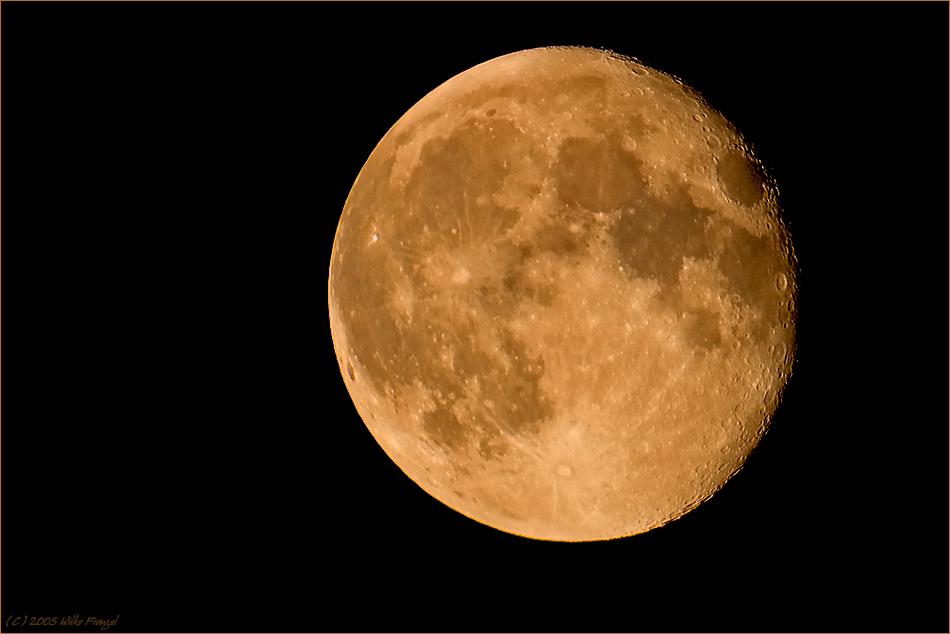 I've seen the bad moon rising