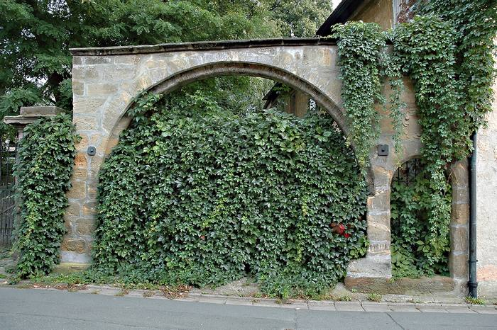 Ivory Gate