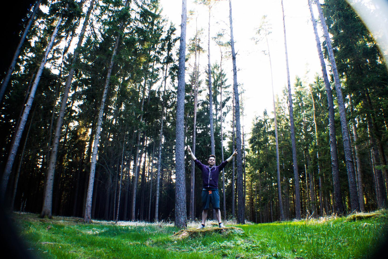 ..iwo im Wald