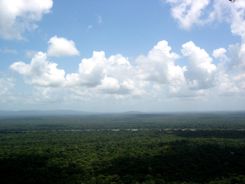 Iwokrama from Turtle Mountain