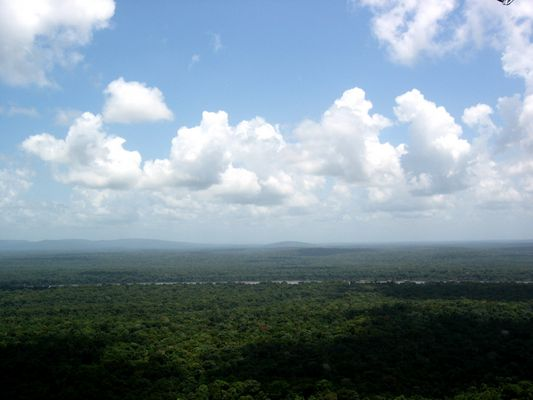 Iwokrama from Turtle Mountain
