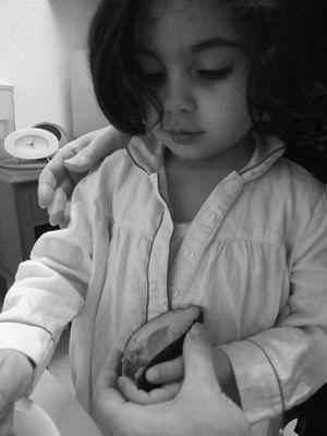 J. la princesse .