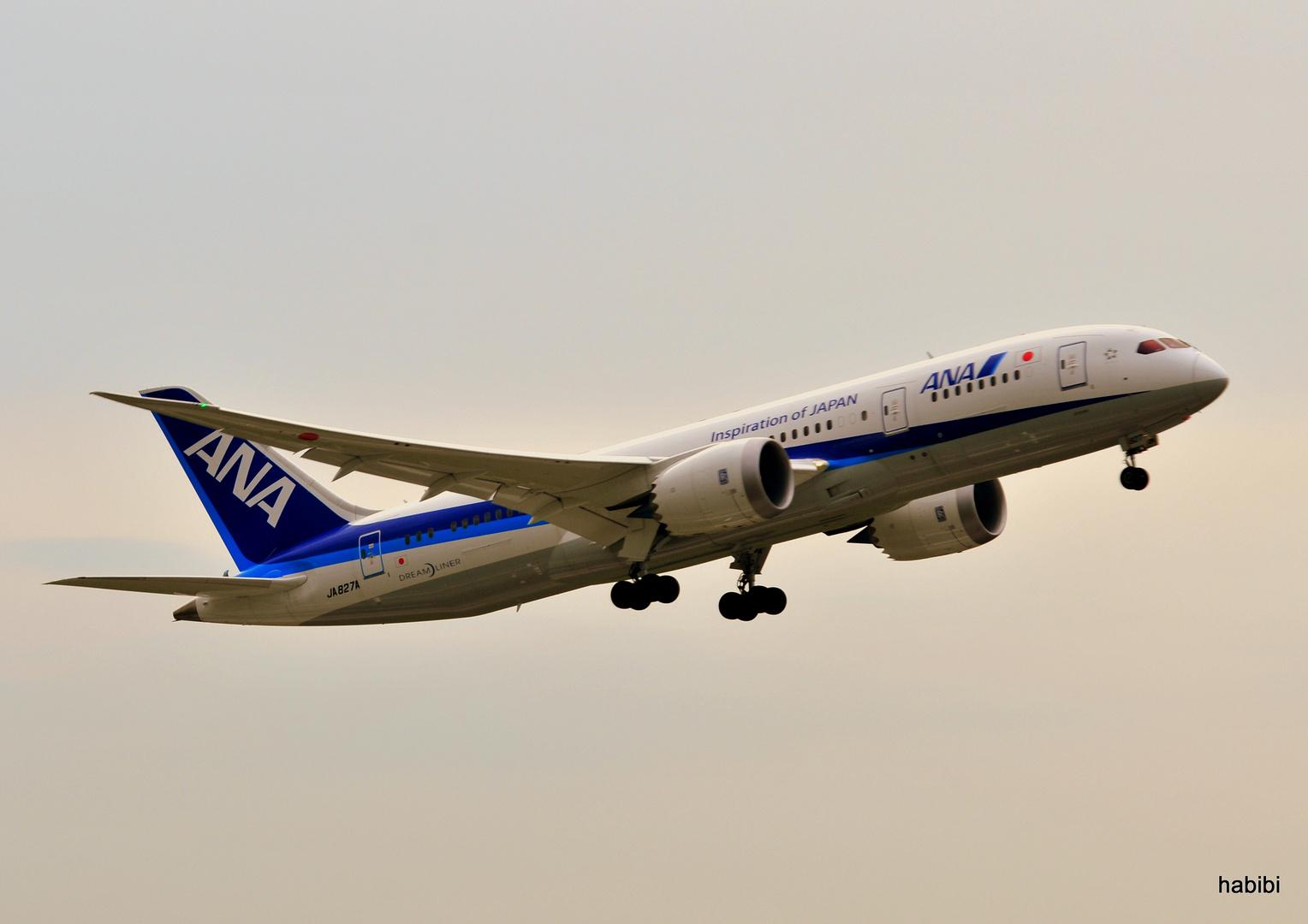 JA 827A / ANA in EDDL :)