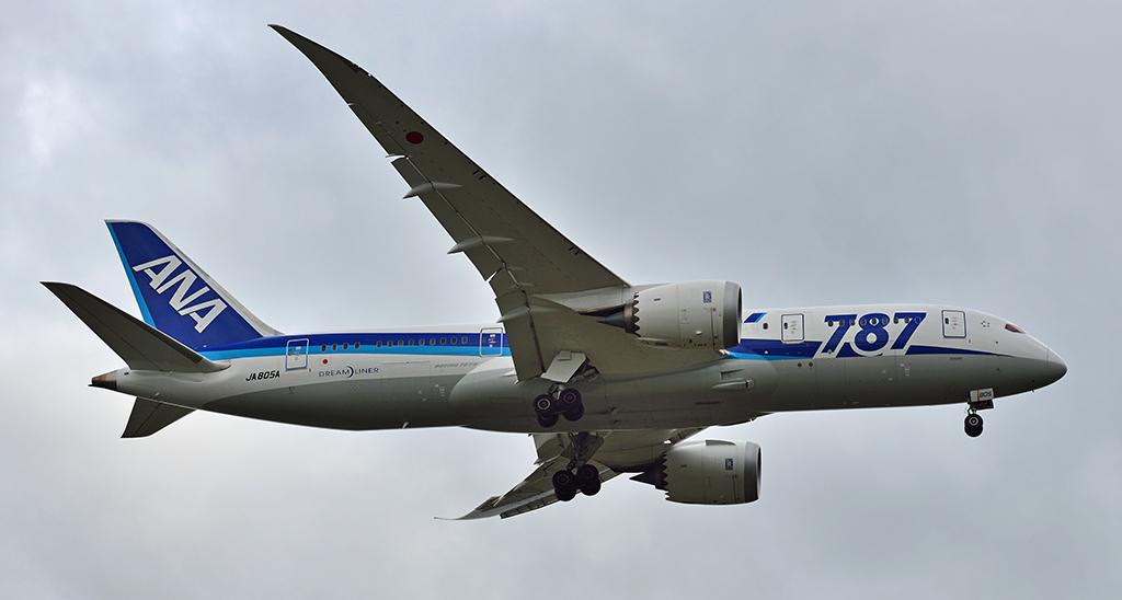 JA805A - All Nippon Airways - ANA - Boeing 787-8 - Dreamliner