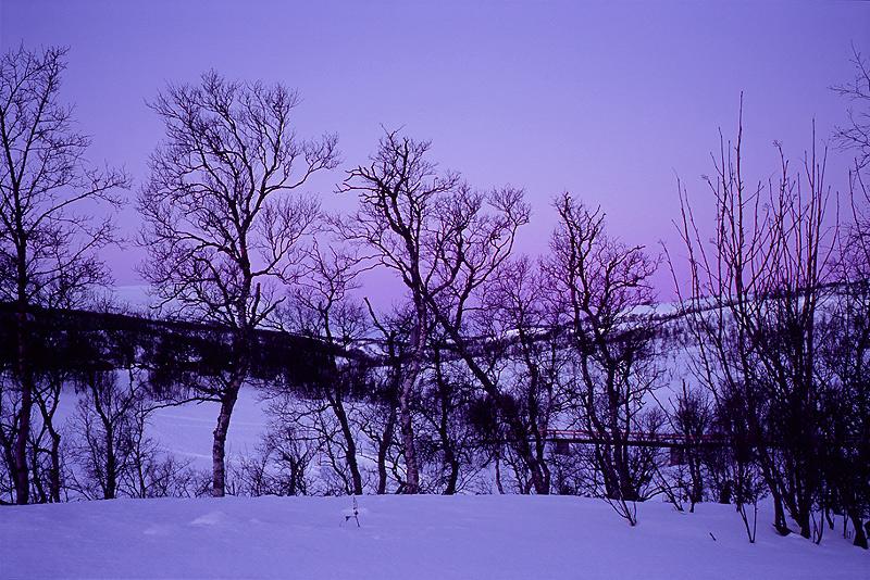 Jämtland mit Schneeschuhen #9