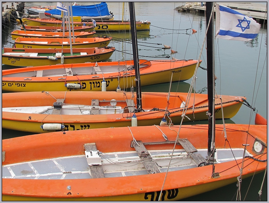 Jaffa orange