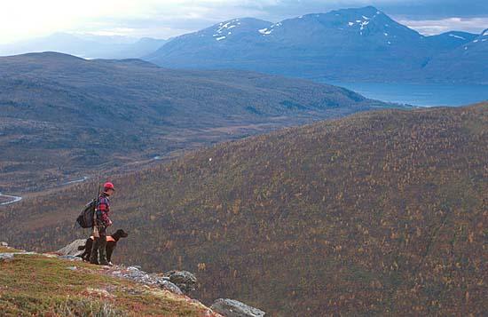 Jagen in Nord Norwegen