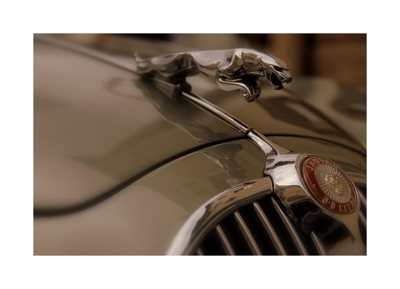 Jaguar 3,8 Litre