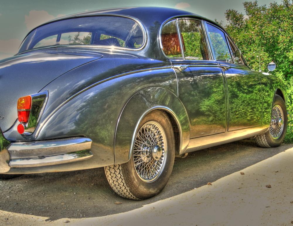 Jaguar in HDR