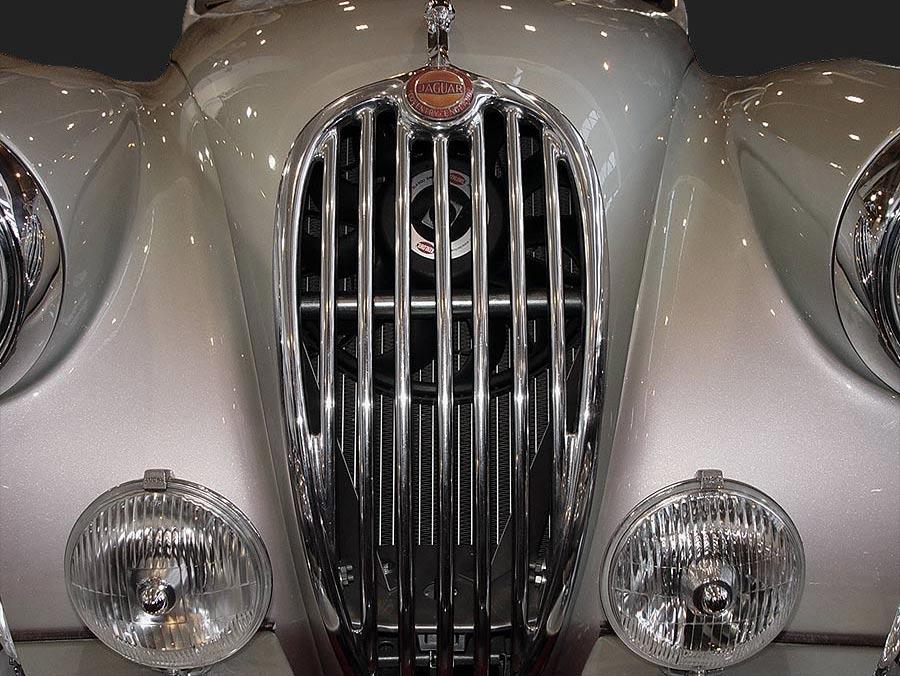 Jaguars gefallen mir am besten,