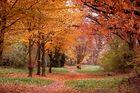 Jahreszeit in Farbe