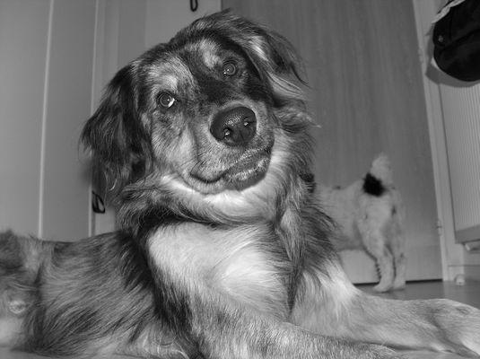 J'aime vous sourire...