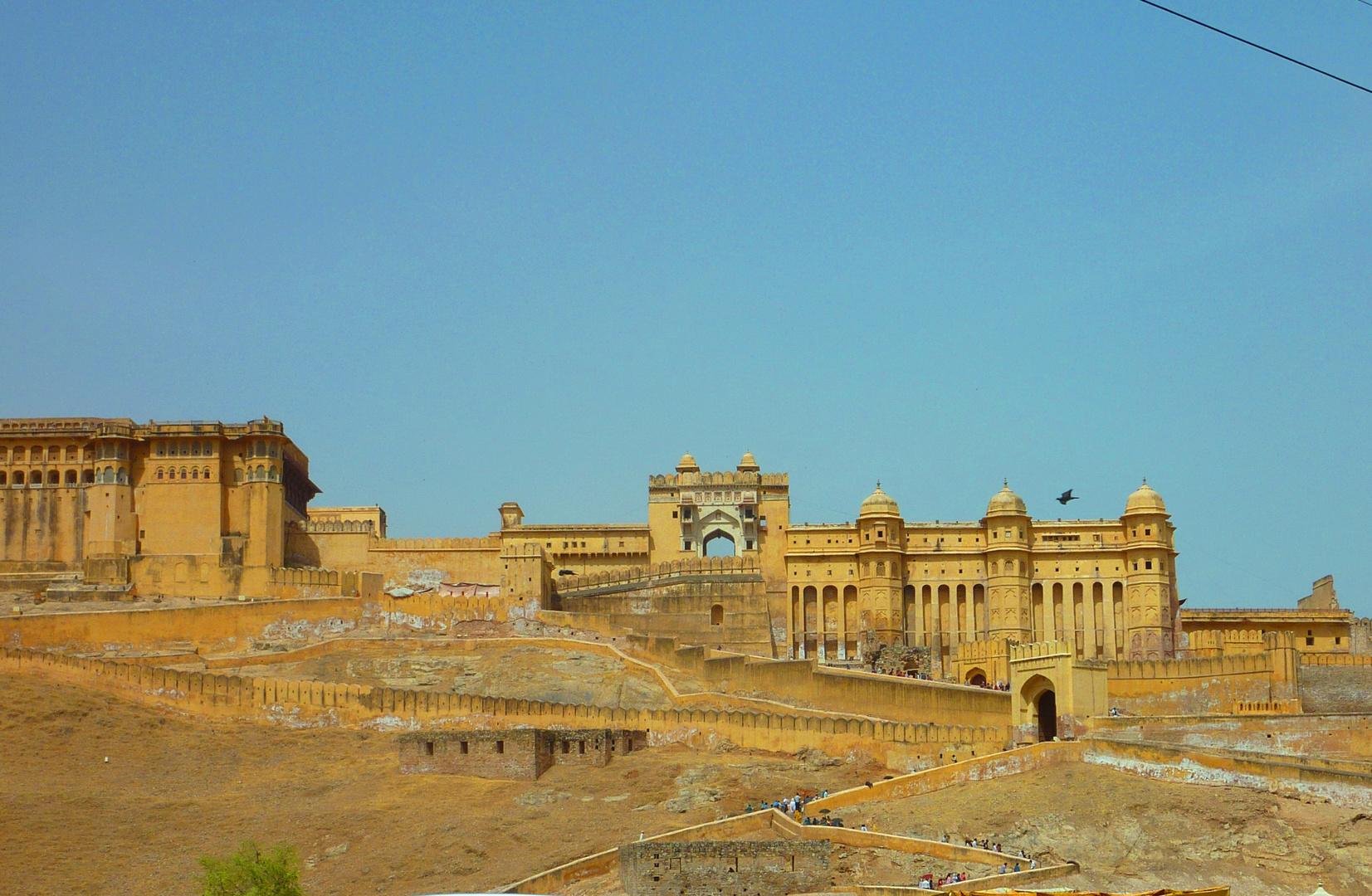 Jaipur Queen