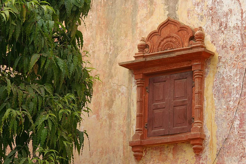 Jaipur Window