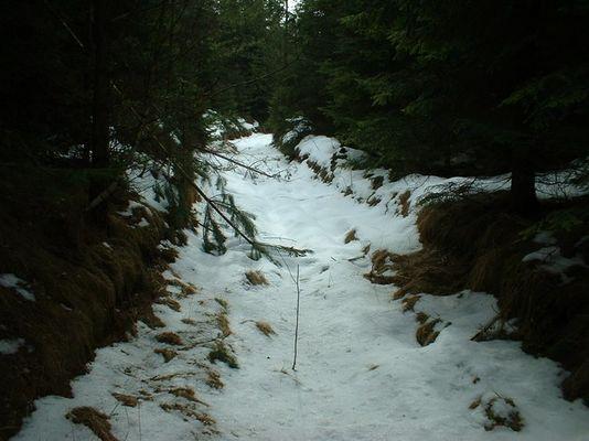 Jakobsweg im Schnee