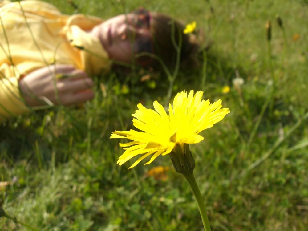 Jana und die Blume