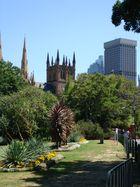 Janvier 2009 - Cathedrale Ste Marie vue du Botanic Garden