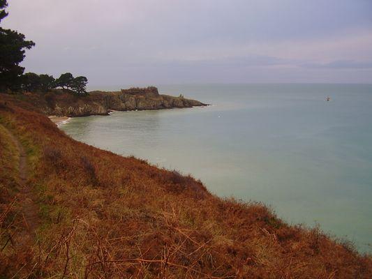Janvier sur Belle-ile-en-mer la pointe du Bugull
