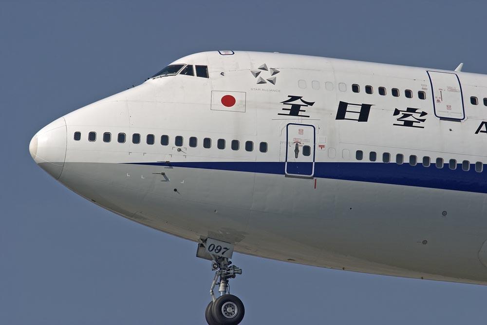 Japan Jumbo...
