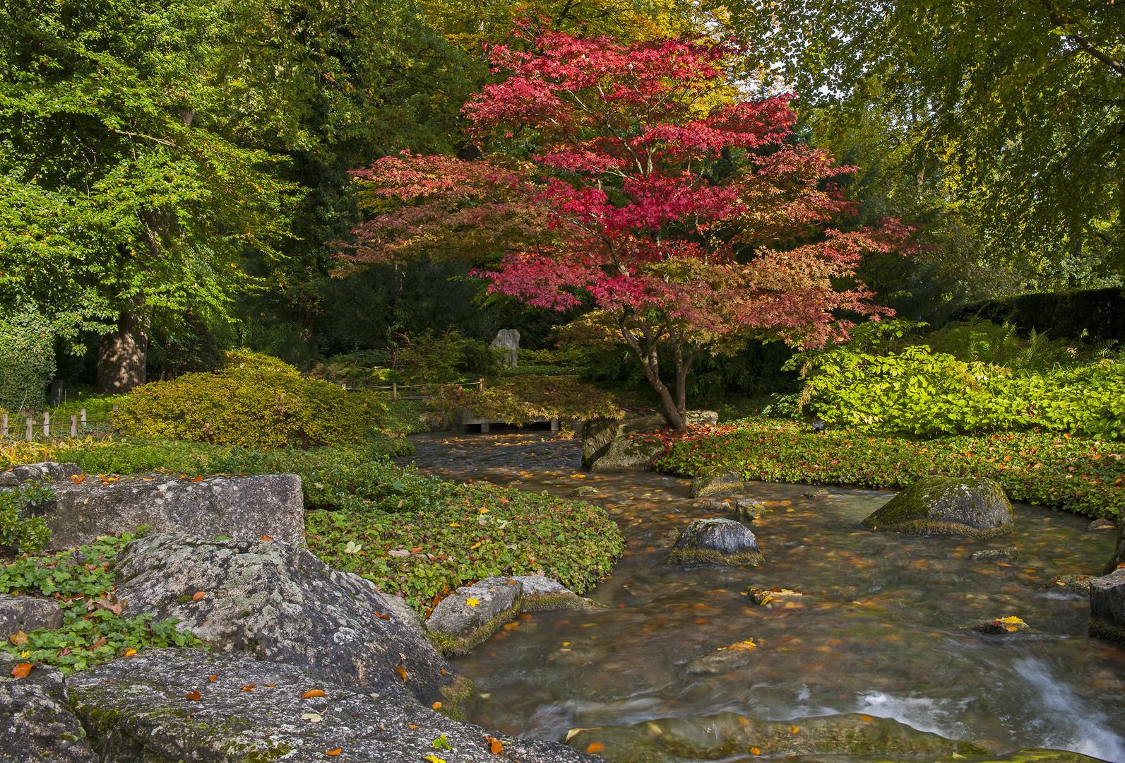Japangarten in Augsburg