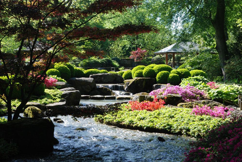 japanische idylle 2 foto bild landschaft garten parklandschaften natur bilder auf. Black Bedroom Furniture Sets. Home Design Ideas