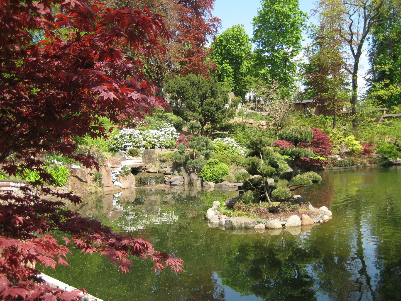 japanischer garten foto bild landschaft garten parklandschaften rheinlandpfalz bilder. Black Bedroom Furniture Sets. Home Design Ideas