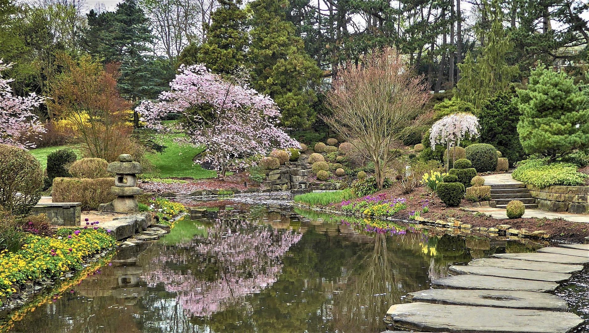 Inspirierend Japanischer Steingarten Ideen