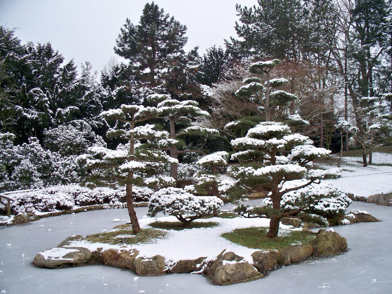 Japanischer Garten im Schnee