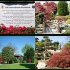 Japanischer Garten im Seeparkgelände von Freiburg