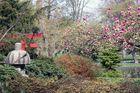 Japanischer Garten Karlsruhe