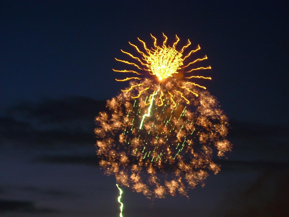 Japanisches Feuerwerk Düsseldorf 2008