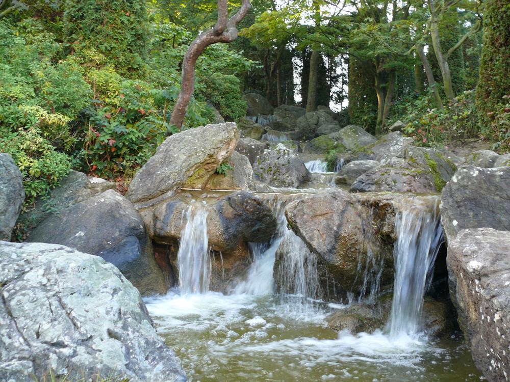 Japansicher Garten in der Bonner Rheinaue