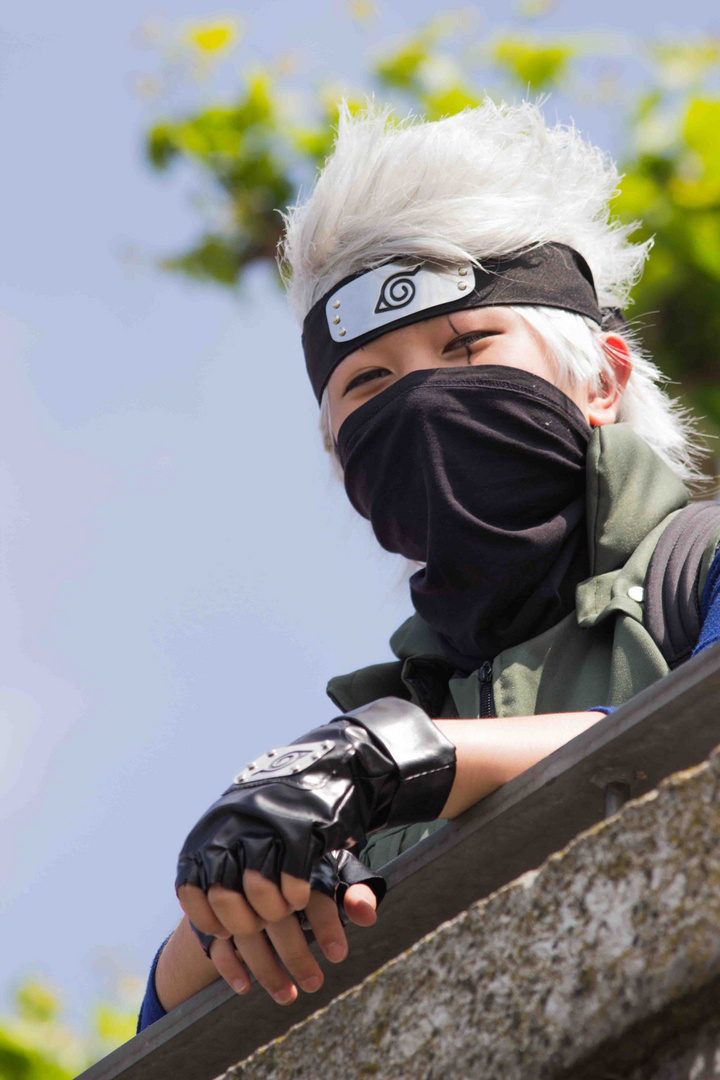 Japantag 2014