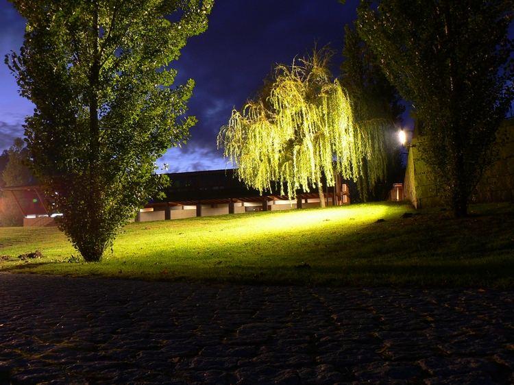 Jardim na noite