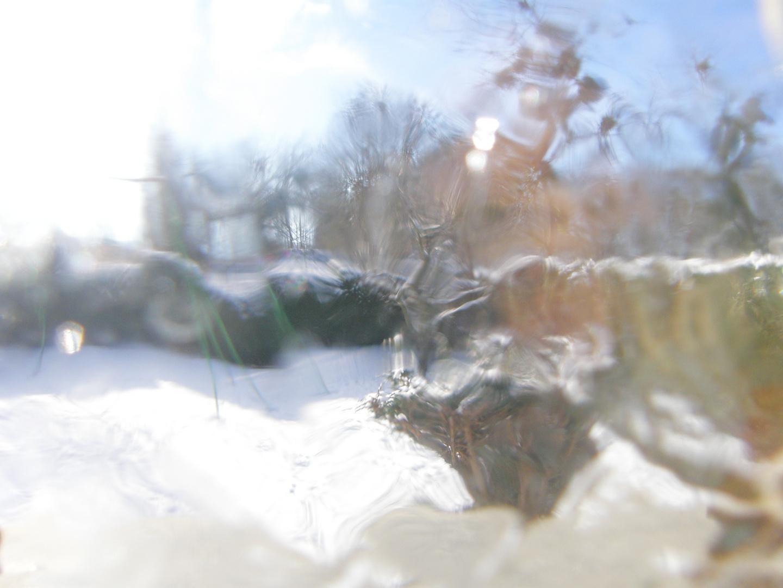 jardin à travers la glace