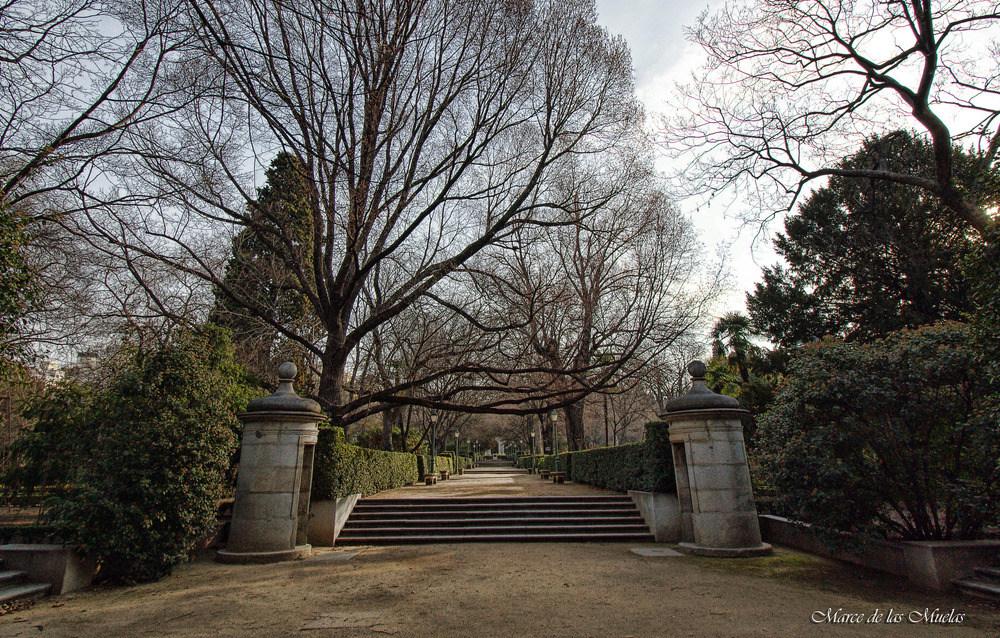 ...Jardin Botanico 2...