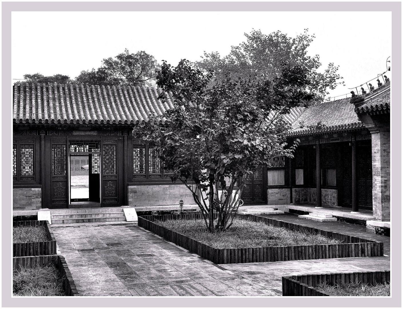 Jardin d'Asie. 1