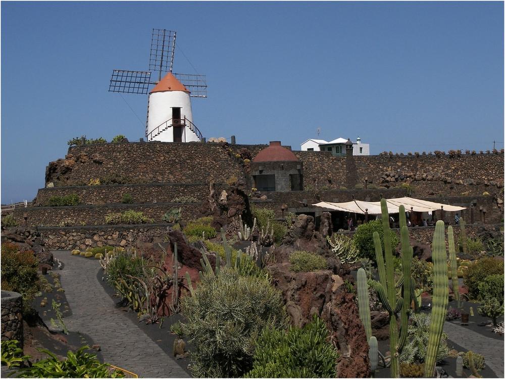 Jardin De Cactus 1 - Lanzarote