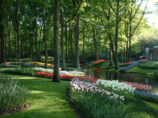 Jardin de Kinderjik - Hollande - 2008
