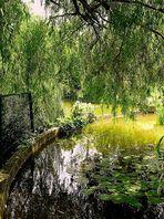 Jardin de l'hôtel de ville de Mérignac