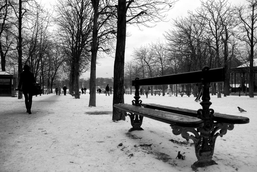 Jardin du Luxembourg janvier 2009