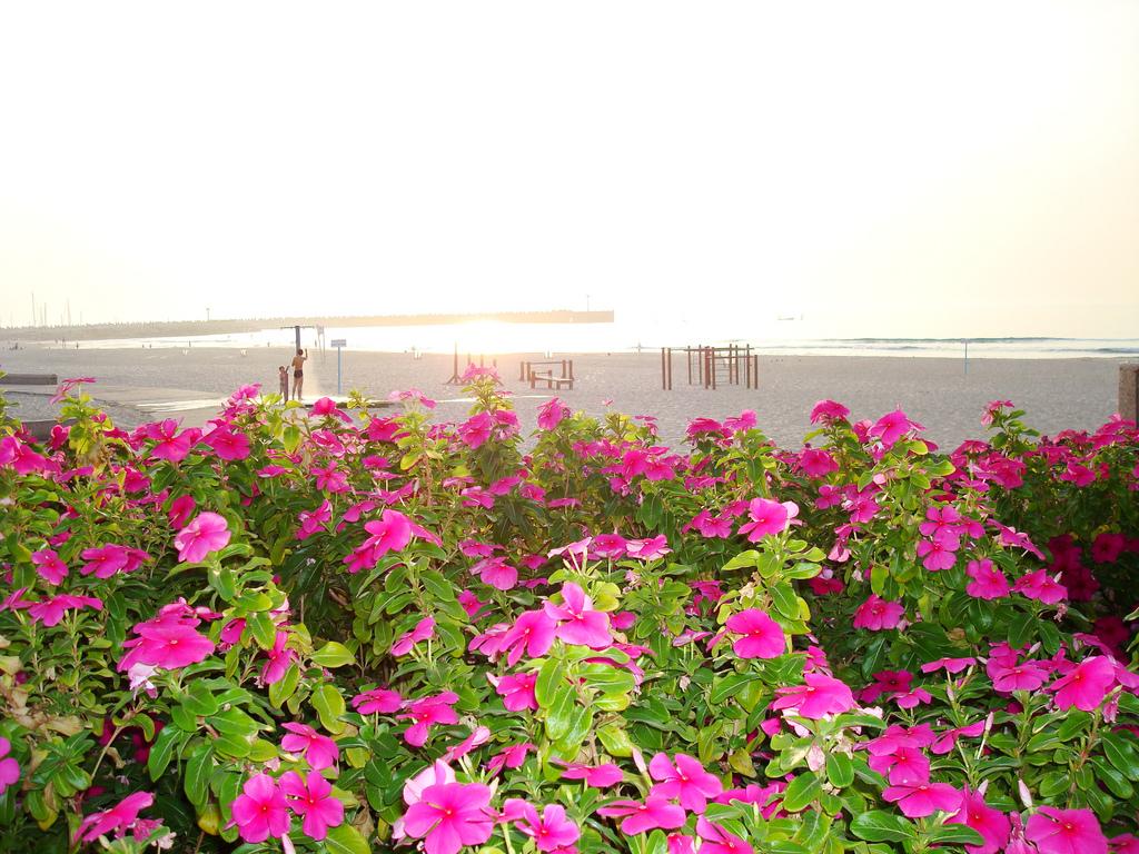 Jardin en playa