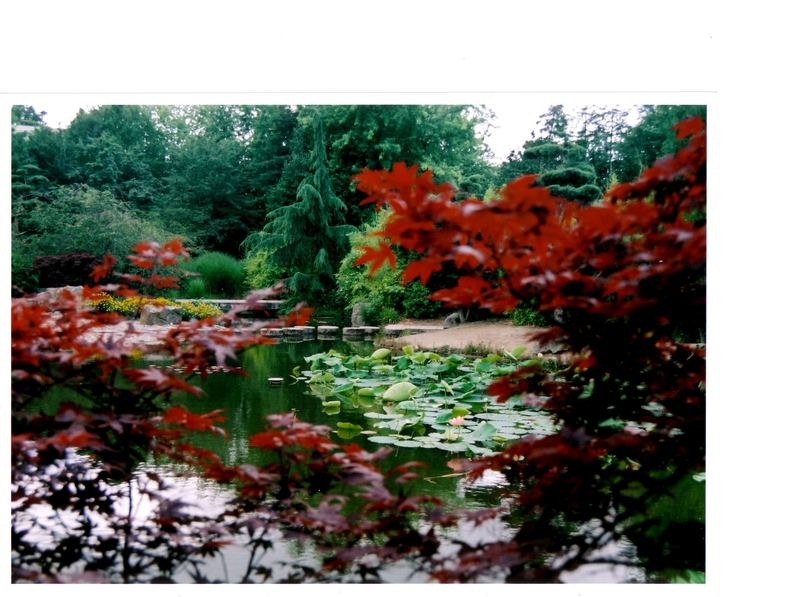 Jardin Ile de Versailles (Nantes)
