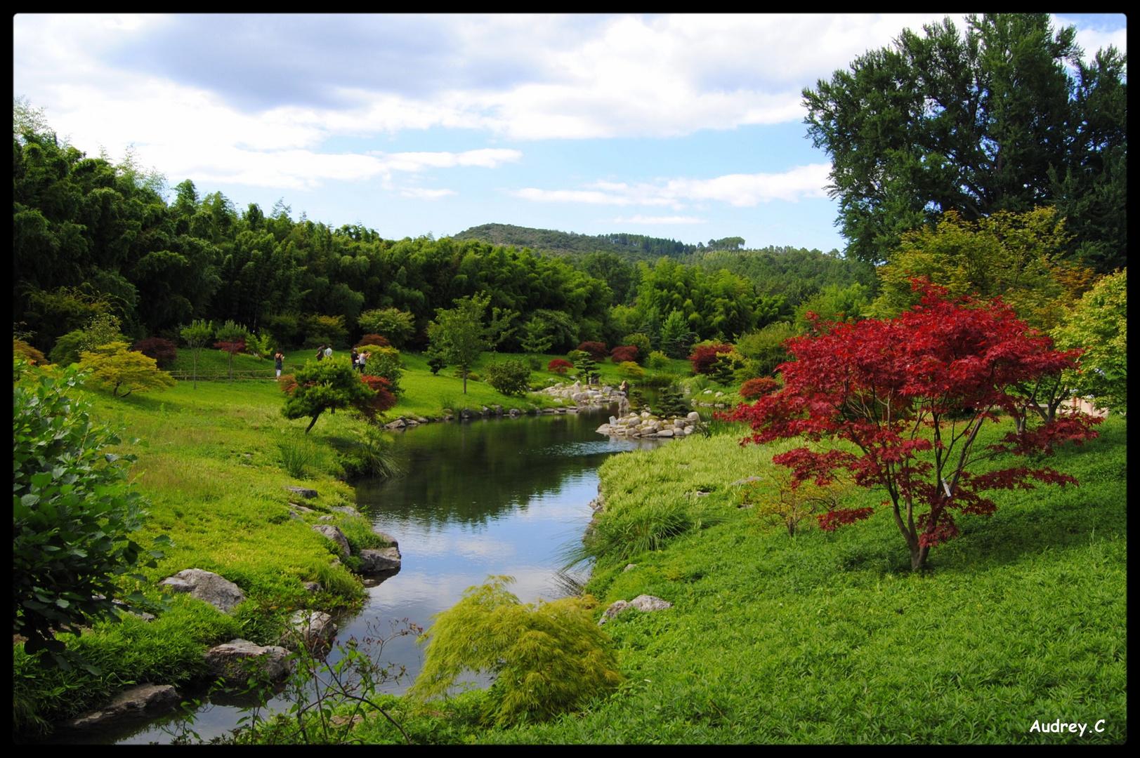 Jardin Japonnai