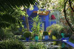Jardin Majorelle von Yves Saint Laurent in Marrakech 5