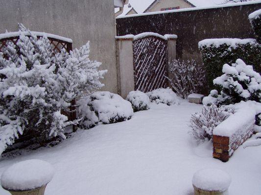 Jardin sous la neige 2